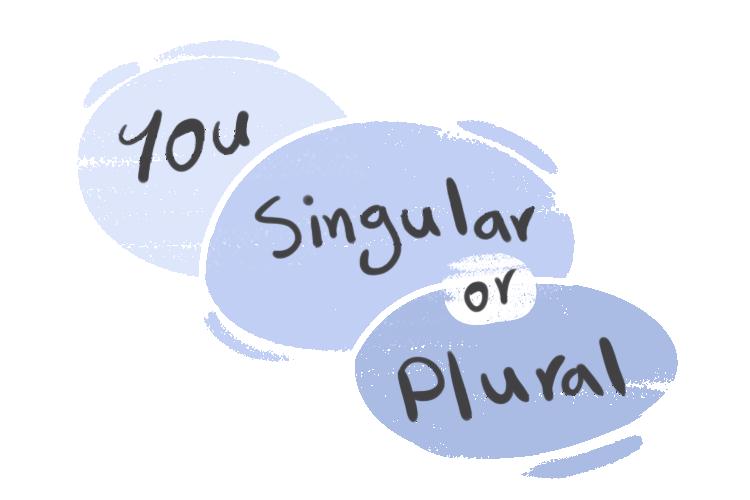 """You"" Singular or Plural in the English Grammar"