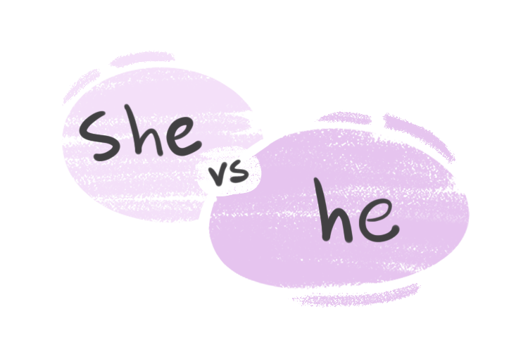 """""""She"""" vs. """"He"""" in the English Grammar"""