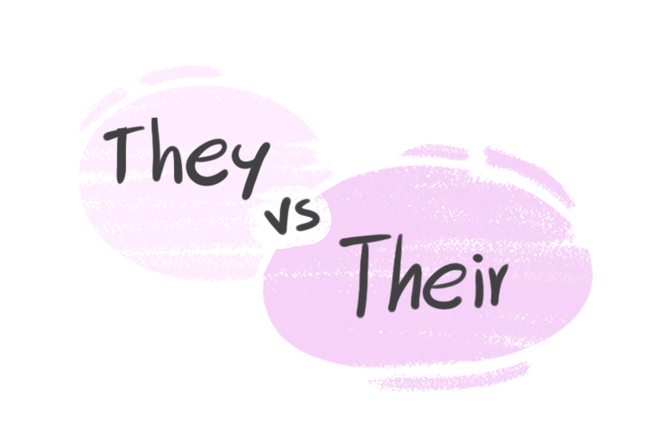 """""""They"""" vs. """"Their"""" in the English Grammar"""