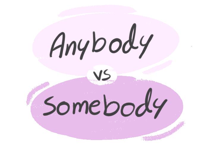 """""""Anybody"""" vs. """"Somebody"""" in the English Grammar"""