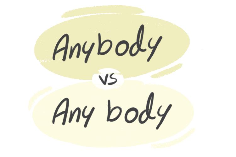 """Anybody"" vs. ""Any Body"" in the English Grammar"