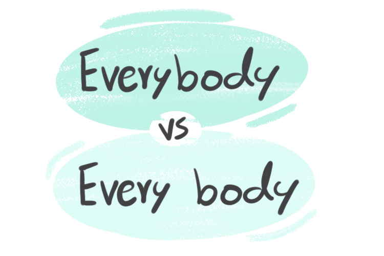 """Everybody"" vs. ""Every Body"" in English Grammar"