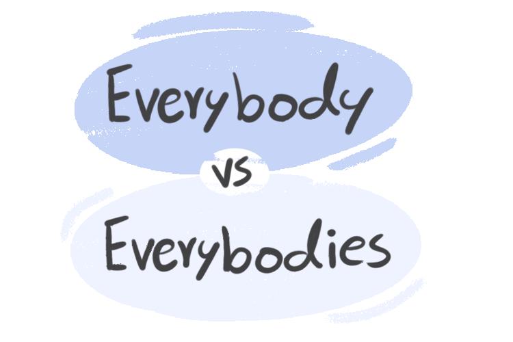 """Everybody"" vs. ""Everybodies"" in English Grammar"